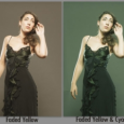 Hey folks, with Lightroom 4 Beta's new RGB curves, I've knocked out some free presets for you: Faded Yellow, to give an old time look. Faded Yellow & Cyan, to...